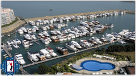 Discovery Bay Marina Club Membership buy / rental / trade